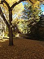 Palliser Garden (11720098715).jpg