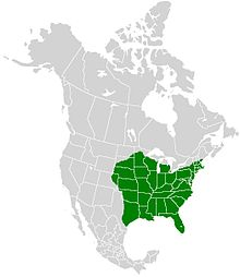 Papilio glaucus range map.JPG