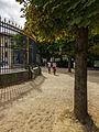Paris 20130811 - Jardin du Luxembourg 2.jpg