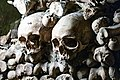 Paris Catacomb Skulls (34377051594).jpg