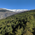 Parque Nacional Sierra.Nevada 4.png