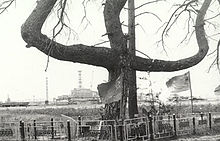 A tree in an odd shape, somewhat like a trident. In the background is the power plant