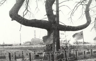 Chernobyl Exclusion Zone - The oak Partisan's Tree or Cross Tree. The power plant can be seen in the background.
