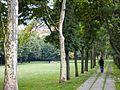 Paseo Andra Mari (Getxo) - panoramio.jpg