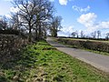Pasture Lane towards Gaddesby - geograph.org.uk - 713142.jpg