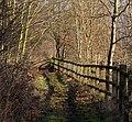 Path (6801785365).jpg
