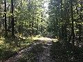 Payamatha Horse Trail 1.jpg