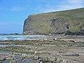 Pencannow Point Crackington Haven Cornwall - geograph.org.uk - 102142.jpg