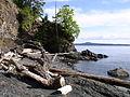 Pender Island5.jpg