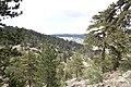 Persephone Nature Trail, Troodos, Cyprus - panoramio (3).jpg