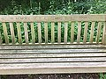 Photograph of a bench (OpenBenches 571).jpg