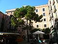 Pi de la plaça del Pi P1100928.JPG