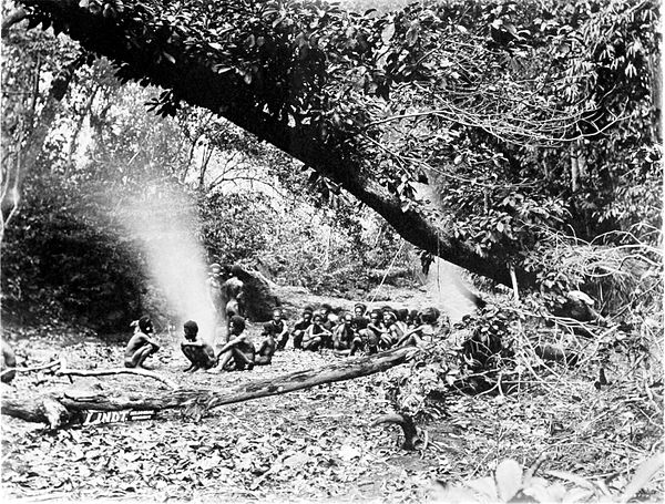 Black and white photograph of a group of men roasting yams in a forested area.