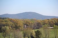 Pine Mountain seen from Mound A, April 2017.jpg