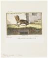 Plecotus auritus - 1700-1880 - Print - Iconographia Zoologica - Special Collections University of Amsterdam - UBA01 IZ20800091.tif