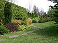 Poland. Warsaw. Powsin. Botanical Garden 065.jpg
