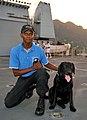 Police dog team trained in UK collects vital evidence to help prosecute suspected pirates in the Seychelles (6436829979).jpg