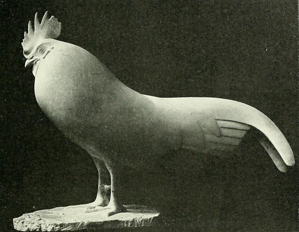 Pompon - Coq