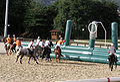 PonteDeLima Horseball03.jpg