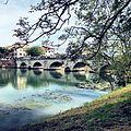 Ponte di Tiberio Città di Rimini.jpg