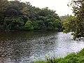 Pookot Lake2.jpg