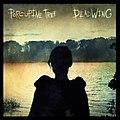 Porcupine Tree - Deadwing (album cover).jpg