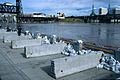 Portland seawall during 1996 Willamette River flood.jpg