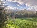 Portuguese countryside (49154871858).jpg