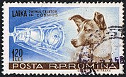 Postage stamp depicting Laika