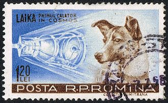 "Laika - Romanian stamp from 1959 with Laika (the caption reads ""Laika, first traveller into Cosmos"")"