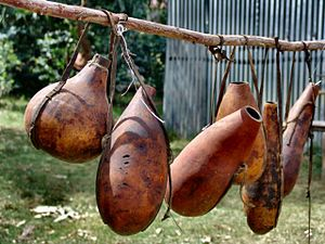 Container - Simple containers made from gourds being sold for use as calabash in Kenya.