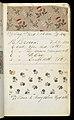 Printer's Sample Book (USA), 1880 (CH 18575237-63).jpg