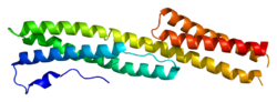 Protein DST PDB 2iak.png