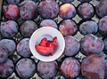 Prunes au marché de Sorgues.jpg