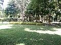 Putrajaya's Botanical Garden 16.jpg