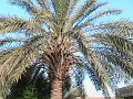 RAWA IRAQ 14.jpg