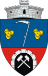 Coat of arms of Ciudanovița