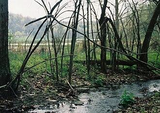 Richhill Township, Greene County, Pennsylvania - Ryerson Station State Park is in Richhill Township.