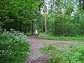 Radotín, lesní cesta.jpg