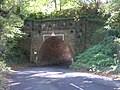 Railway bridge near South Nutfield - geograph.org.uk - 70855.jpg