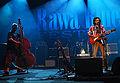 Rawa Blues 2008 19.jpg