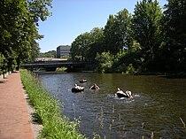 Renton, WA - tubing on the Cedar River 02.jpg