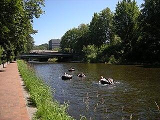 Cedar River (Washington) river in the United States of America