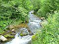 River-Sajo-in-Slovakia03.jpg