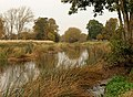 River Avon at Charlecote House - geograph.org.uk - 1567617.jpg