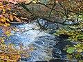 River Calder in Calderglen Country Park - geograph.org.uk - 1001784.jpg
