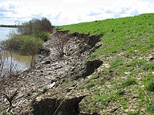 River Erosion in the Central Valley (8482352597).jpg
