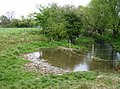 River Gwash - geograph.org.uk - 487431.jpg