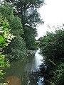 River Thame near to Weir Lodge, Eythrope - geograph.org.uk - 1494822.jpg