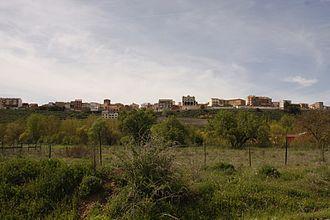 Roa de Duero - View of Roa de Duero, 2010